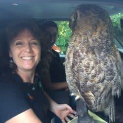 Patricia Thomson holding an owl